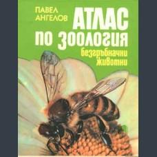 Ангелов, Павел. Атлас по зоология.